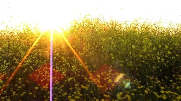 sunrise at my prayer spot
