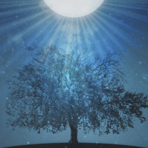 light shine down on me