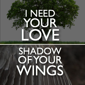 i need your love shadow wing